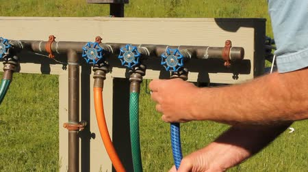 irrigate : attaching a garden hose