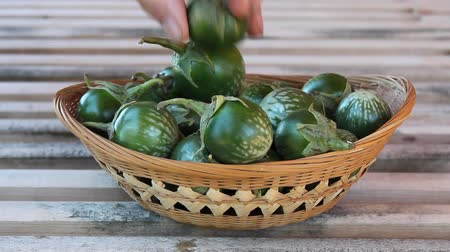 filling a wicker basket with thai round eggplant