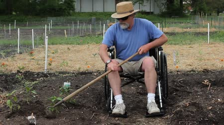 disabled man weeding his garden with a hoe Wideo