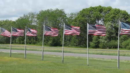several American flags blowing in a strong wind