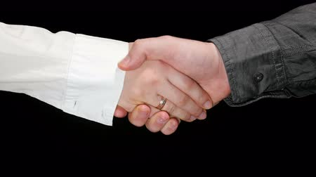 compromise : Business Greeting Handshake