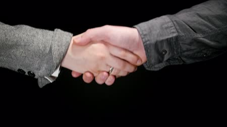 compromise : Business Greeting Handshake 3