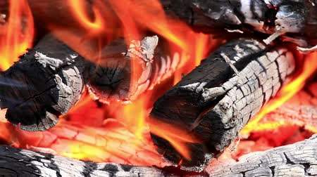 fireside : Fire Stock Footage