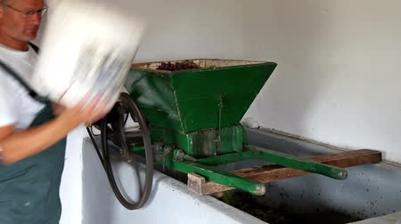 winnica : Grape pressing