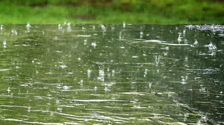 cold water : Spring heavy rain Stock Footage