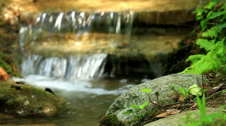 natural tranquil :  Beautiful veil cascading waterfall, mossy rocks