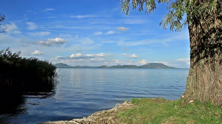 duck : Beautiful landscape over the lake Balaton of Hungary