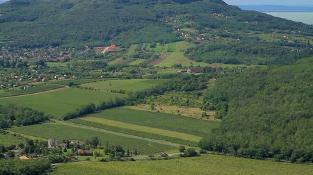 szczupak : Beautiful green landscape from Hungary with volcanoes (near lake Balaton)
