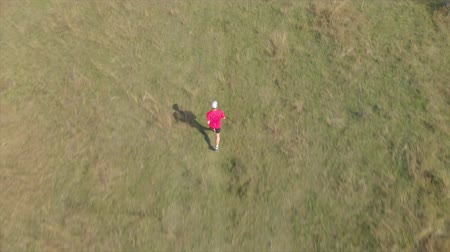 Aerial view a man running on the Hungarian meadow Wideo