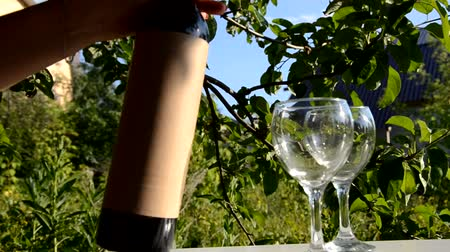 tasting : two glasses of tasty wine. Red wine poured into wine glass on background of green tree leaf foliage. purple flower. A woman opens a bottle with a corkscrew