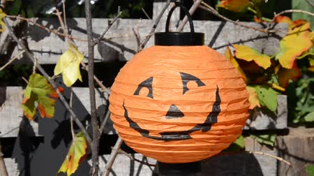 karanlık : Halloween decorations in the front yard of a house on Halloween. ghost and bat Stok Video