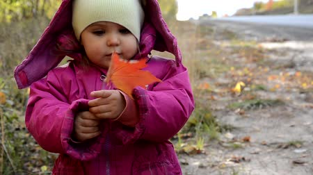 desgaste : Happy little child. Child walking in warm jacket outdoor. Girl happy in pink coat enjoy fall nature park. Child wear fashionable coat with hood. Fall clothes and fashion concept. Stock Footage