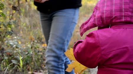 traje de passeio : Happy little child. Child walking in warm jacket outdoor. Girl happy in pink coat enjoy fall nature park. Child wear fashionable coat with hood. Fall clothes and fashion concept. Stock Footage