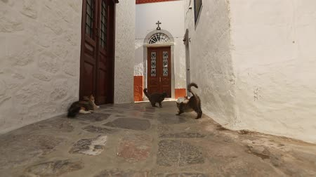 uliczka : Greek islands. Street of the old Greek town. Paving in old city camera movement HD