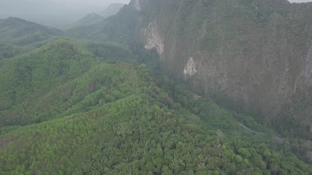 she : Aerial footage of Phang Nga Bay, Krabi, Phuket region, Thailand. Drone fly over green mountains, river and road. Amazing landscape of Thailand. Stock Footage
