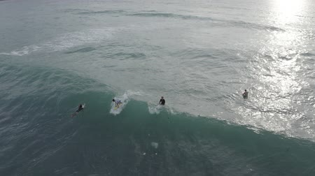 plavec : Aerial footage of swimming people with boards and surfers catching and riding waves in ocean, Dreamland beach, Bali, Indonesia. Portugal surfing, Travel time. Relax, Summer vacation.
