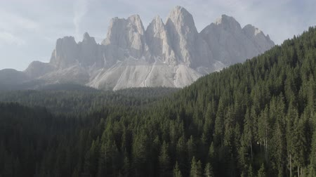 dolomit : Aerial footage of Dolomites Alps mountains in summer. Geisler or Odle Dolomites Group. Furchetta mountain peak. Val Di Funes, Santa Maddalena, Italy Stok Video