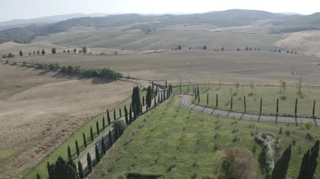 Aerial footage of Tuscany landscape, Val dOrcia, Siena, Italy. Golden and green glades, hills, road with cypress trees. Nature. Italian agriculture, countryside, farming. D-log.