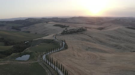ITALY, ASCIANO - JULY 3, 2019: Aerial footage of Tuscany landscape and Asciano villa, curved road with cypress trees, field around at summer sunset. Siena, Italy. D-log. Stok Video