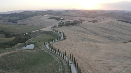 ITALY, ASCIANO - JULY 3, 2019: Aerial footage of Tuscany landscape and Asciano villa, curved road with cypress trees, field around at summer sunset. Car driving on road to villa. Siena, Italy. D-log.