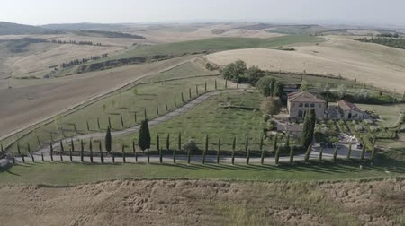 Aerial footage of Tuscany landscape and countryside villa, Val dOrcia, Italy. Golden and green glades, hills, road with cypress trees. Siena. D-log.