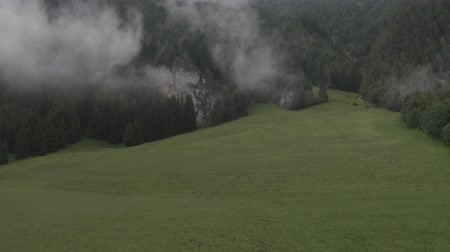 hegyoldalban : Aerial pan down footage of spruce mountain forest in mist. Low clouds. Austrian village in the fog. Green meadow. Rural landscape. Austria. Stock mozgókép