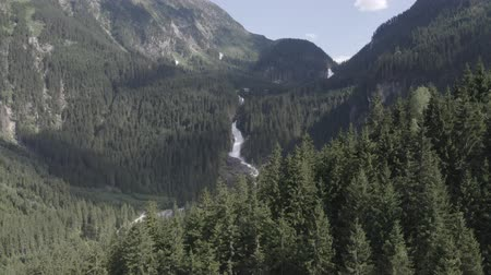 tirol : Aerial pan up view of Krimml waterfall in fir tree forest in Alpine mountains, Austria. Summer landscape. Sunny day.