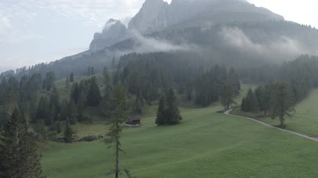 arborizado : Aerial footage of Dolomites Alps mountains in summer. Rural landscape with farming house, road, pine trees, mountains and low clouds. Geisler or Odle Dolomites Group. Italy