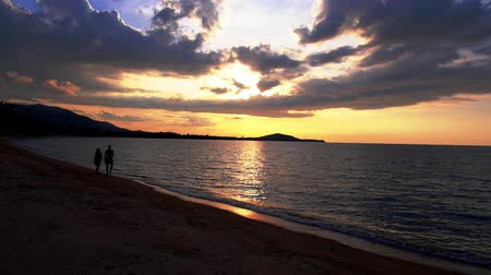 медовый месяц : Romantic Walk of Honeymoon Couple with a Jack Russel Terrier against Overwhelming Sunset. Thailand. Koh Samui.
