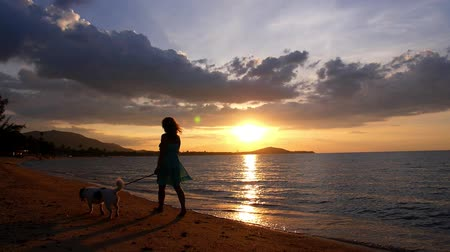 on nature : Youmg curly woman with her cute little dog on the beach at golden sunset background. Slow Motion.