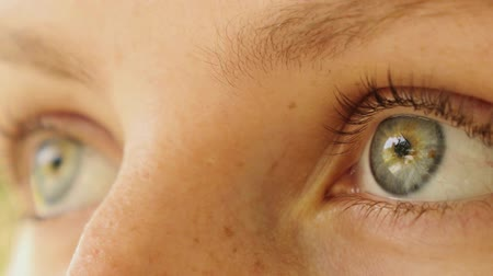 rosto humano : Close up of Beautiful Woman Eyes. Macro. HD, 1920x1080. Vídeos