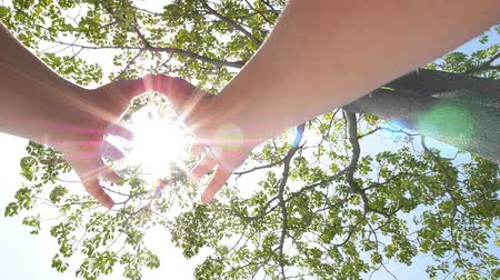 духи : Hands Holding the Sun through Rich Tree Foliage. Slow Motion. HD, 1920x1080. Стоковые видеозаписи