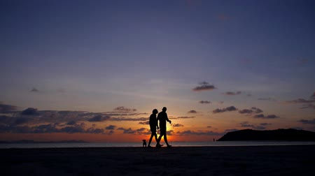 deux amies : Happy Couple Walking with Dog au coucher du soleil sur la plage tropicale. Koh Samui. Thaïlande. Ralenti. HD, 1920x1080.
