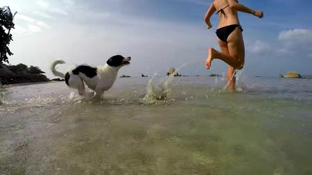 vacation destination : Young Woman in Bikini Running with Dog on Beach. Slow Motion. HD, 1920x1080.