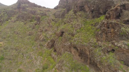 협곡 : Aerial view of rocky mountains in Hell gorge, Canary islands 무비클립
