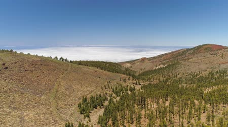 kanarya adaları : Aerial view of the Teide National Park, flight over the mountains. Tenerife, Canary Islands Stok Video