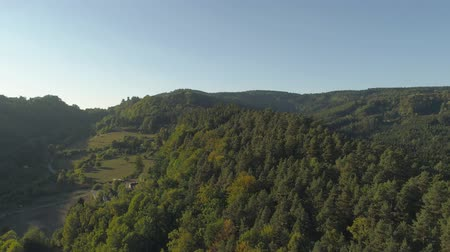 prag : Aerial drone view of Gothic castle in National Park Cesky Raj near Prague. Stok Video