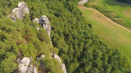 arch bridges : Bastei Park in Saxony, Germany, wonderful aerial drone panorama view. Stock Footage