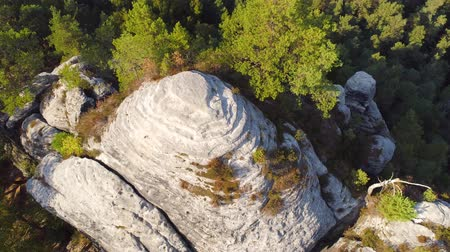 elba : Bastei Park in Saxony, Germany, wonderful aerial drone panorama view. Filmati Stock
