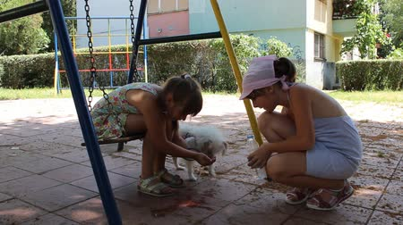 sorumluluk : Help a friend-Two girls and a thirsty dog Stok Video