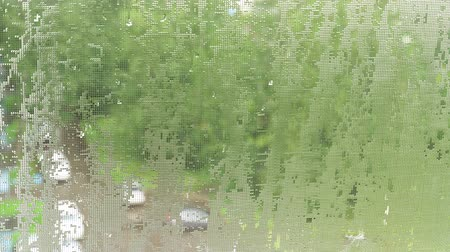 hava durumu : Drops of water, like lenses, on mosquito net. Summer pouring rain in city. 4K video