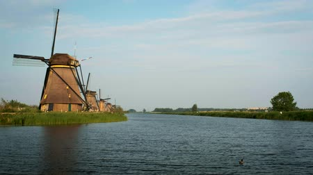 windmolens : Windmills at Kinderdijk in Holland. Netherlands Stockvideo