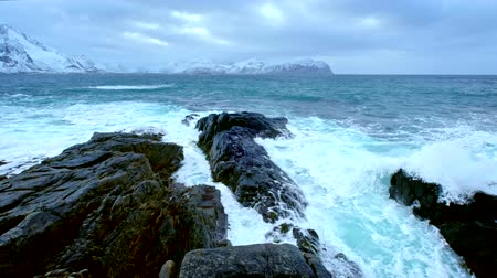 arktický : Norwegian Sea waves on rocky coast of Lofoten islands, Norway