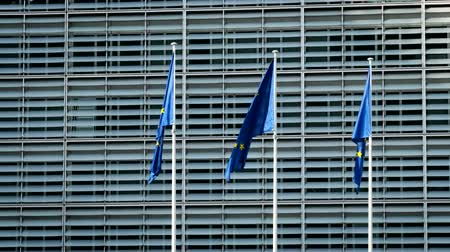 벨기에 : EU flags in front of European Commission