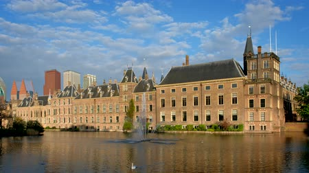 cisne : Hofvijver, The Hague