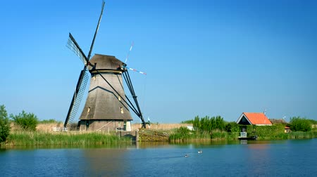 tourist silhouette : Windmills at Kinderdijk in Holland. Netherlands Stock Footage