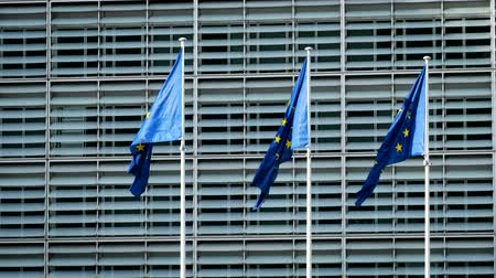 belgie : EU flags in front of European Commission