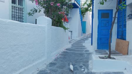 Walking in Mykonos street on Mykonos island, Greece