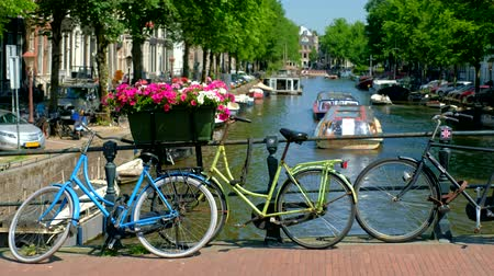Amsterdam canal and flowers Stock Footage