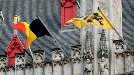rampant : Flag of Flanders and Belgium flag on old building